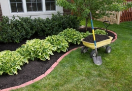 Freshly Mulched Landscape Bed With Plants