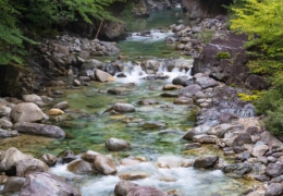 Natural stream with river stones